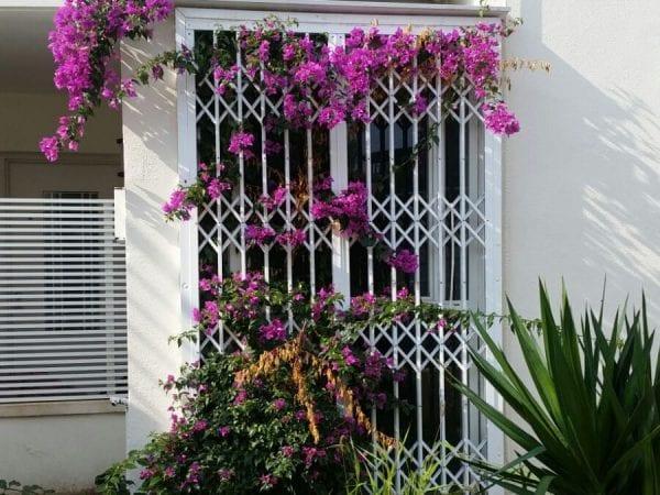 סורג קבוע מתקפל לחלונות