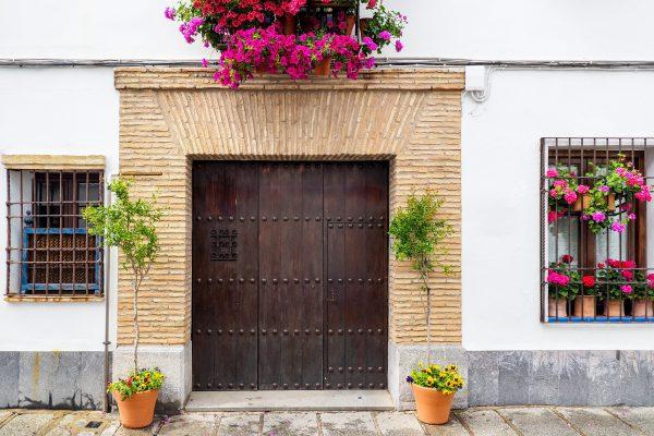 דלת כניסה בסגנון אבירים